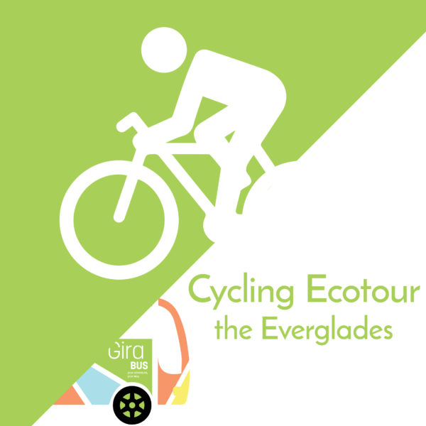 Cycling Ecotour in the Everglades